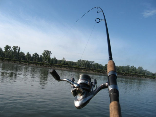 Миллион за рыбалку